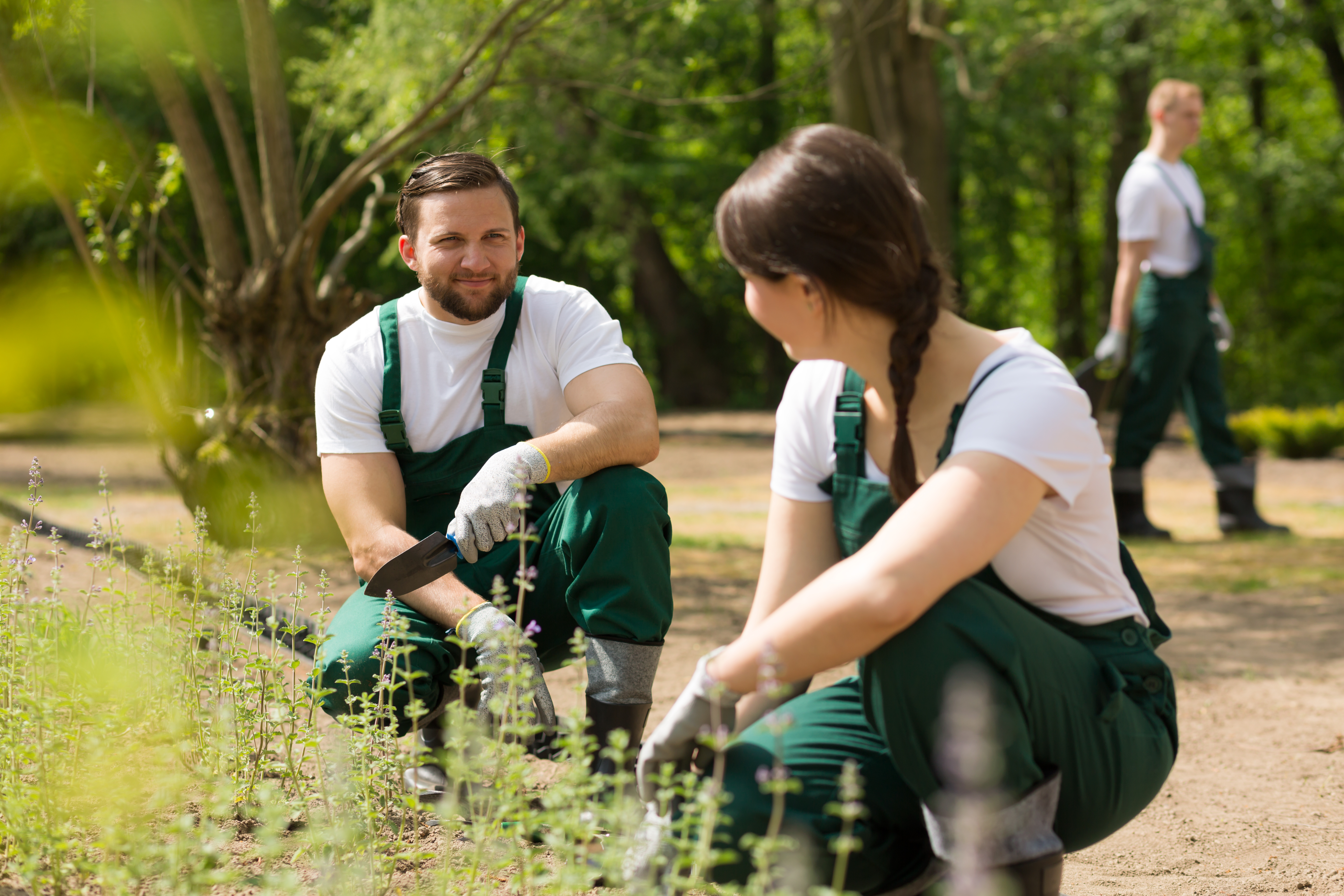 Smooth cooperation between passionate gardeners